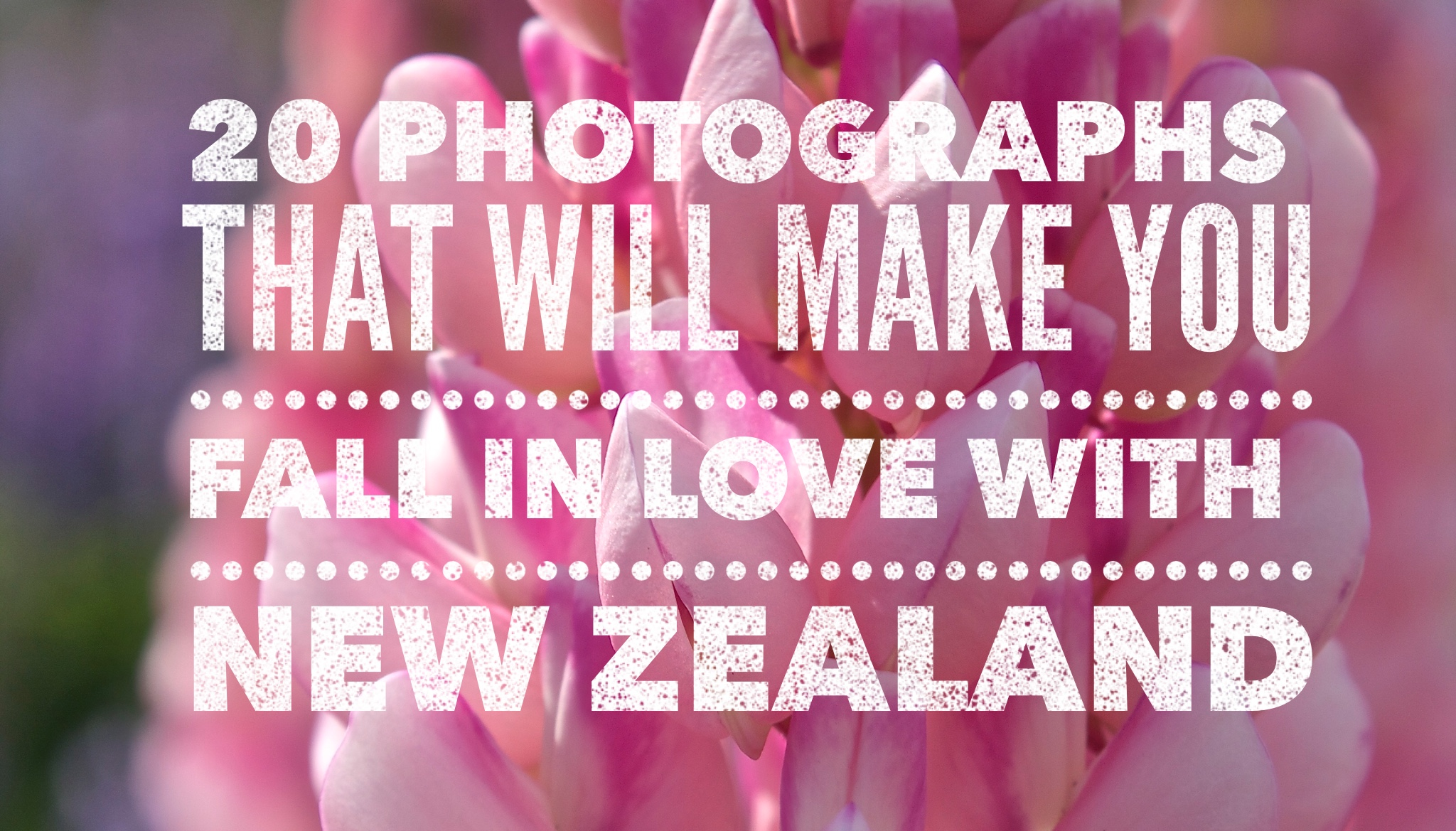 20 Photographs That Will Make You Fall In Love with New Zealand